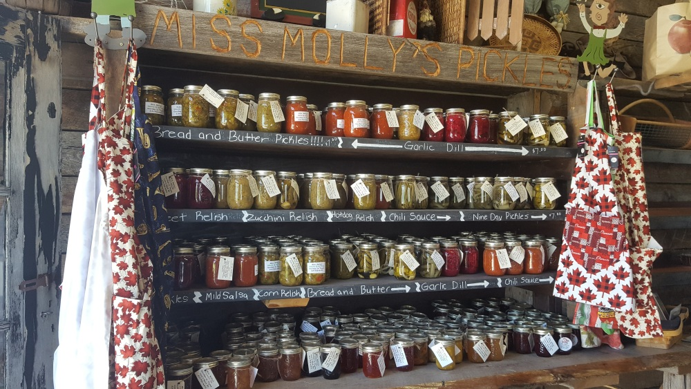 Huge selection of canned goods