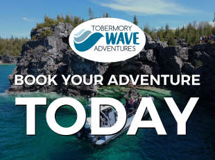 Tobermory Wave Adventures